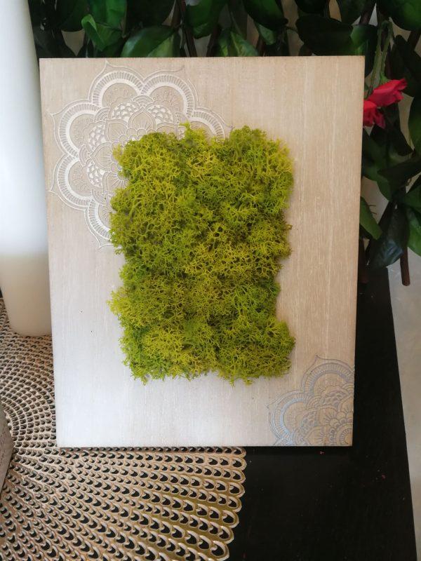 Tablou licheni 1